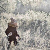Один в лесу :: Екатерина Лебедева