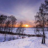 Березы и заходящее солнце на краю зимнего леса :: Сергей Добрыднев