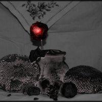 Красное и черное. :: Ирина Атаманская