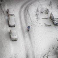 Зима в городе :: Владимир Печенкин