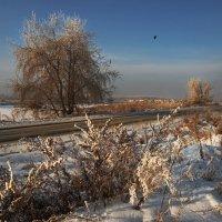 В первый день Нового года :: Александр Попов