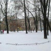 Сад Сан-Галли зимою. (Санкт-Петербург). :: Светлана Калмыкова