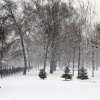Зима уходящая... :: Ирина Румянцева