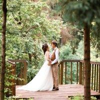 Свадьба на природе :: Татьяна Буркина