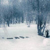 Зима :: Анастасия Позднякова
