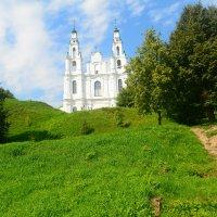 Вид на Софийский собор. :: Светлана Ларионова