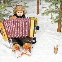 Мужичок с гармошкой. :: Александр Лейкум