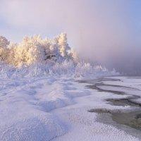 Морозное утро :: Артем Алексеев