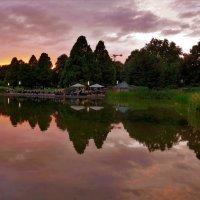 Летний вечер в парке (серия). Закат :: Nina Yudicheva