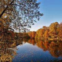 Тихий шёпот милой осени... :: Sergey Gordoff