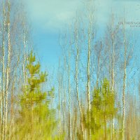 Ранняя весна :: Виктория Трунова