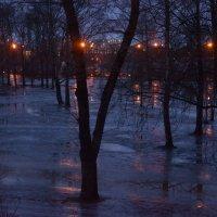 дождь не прекращался всю ночь :: Наталия П