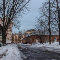 Весна в городе :: Elena Ignatova
