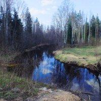 Весна :: Андрей Кротов