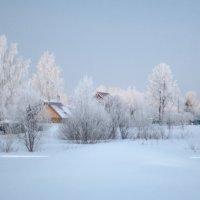 Деревья в шубах белых :: Горелов Дмитрий