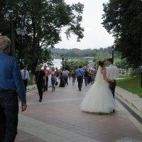 Свадьба :: Вера Щукина