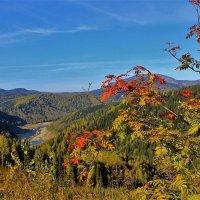 Осень уж не за горами :: Сергей Чиняев
