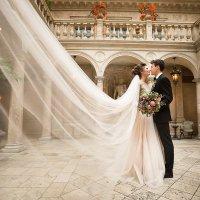 Свадебная фотосессия :: Татьяна Буркина