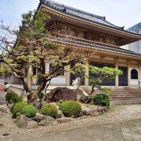 Seishuji Temple Nagoya :: Swetlana V