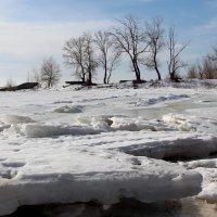 Конец зимы :: Dr. Olver  ( ОлегЪ )