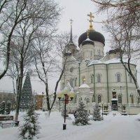 Кафедральный собор в Воронеже :: Самохвалова Зинаида