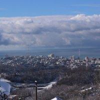 Сочинская зима :: Антонина Владимировна Завальнюк