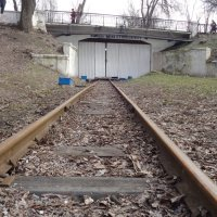 Мосты и туннели отечественной литературы... :: Алекс Аро Аро