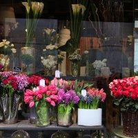 Весна в Париже :: Фотограф в Париже, Франции Наталья Ильина