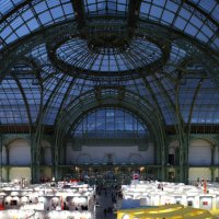 Величественный Гран-Пале в Париже :: Фотограф в Париже, Франции Наталья Ильина