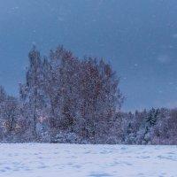 Зимние виды :: Владимир Лазарев