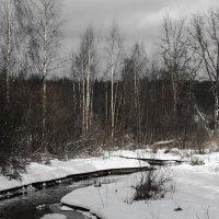 Скоро весна :: Денис Матвеев