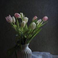 Тюльпаны :: Алина
