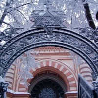 Зимняя синагога :: vadim
