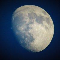 Луна :: Виктор Соколов
