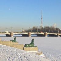 у Каменноостровского моста :: Елена