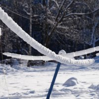 Зимние игры... :: kolyeretka