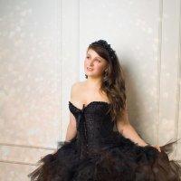 Черный лебедь :: Julia Volkova
