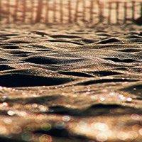 море....из песка. :: Лилия .