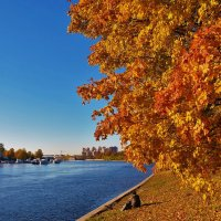 На берегу Средней Невки реки... :: Sergey Gordoff