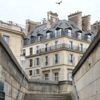 Парижская архитектура :: Фотограф в Париже, Франции Наталья Ильина