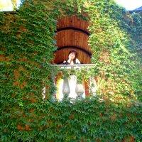 На балконе :: Сергей