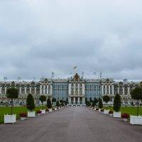 Екатерининский дворец :: Лариса Лунёва