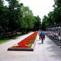 Москва . Чистопрудный бульвар. :: Владимир Драгунский