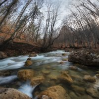Течет река жизни. :: Mihail Mihaylov