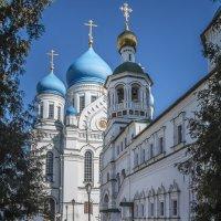Николо-Перервинский монастырь :: Борис Гольдберг
