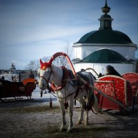 Участница праздника :: Сергей Цветков