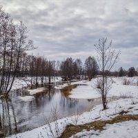 Ну вот и Весна :: Андрей Дворников