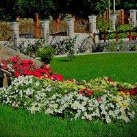 Весенний подарок :: Владимир Куликов