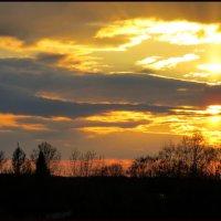 Вечернее небо :: Светлана