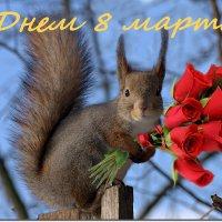 С Праздником, милые женщины! :: Вячеслав Минаев